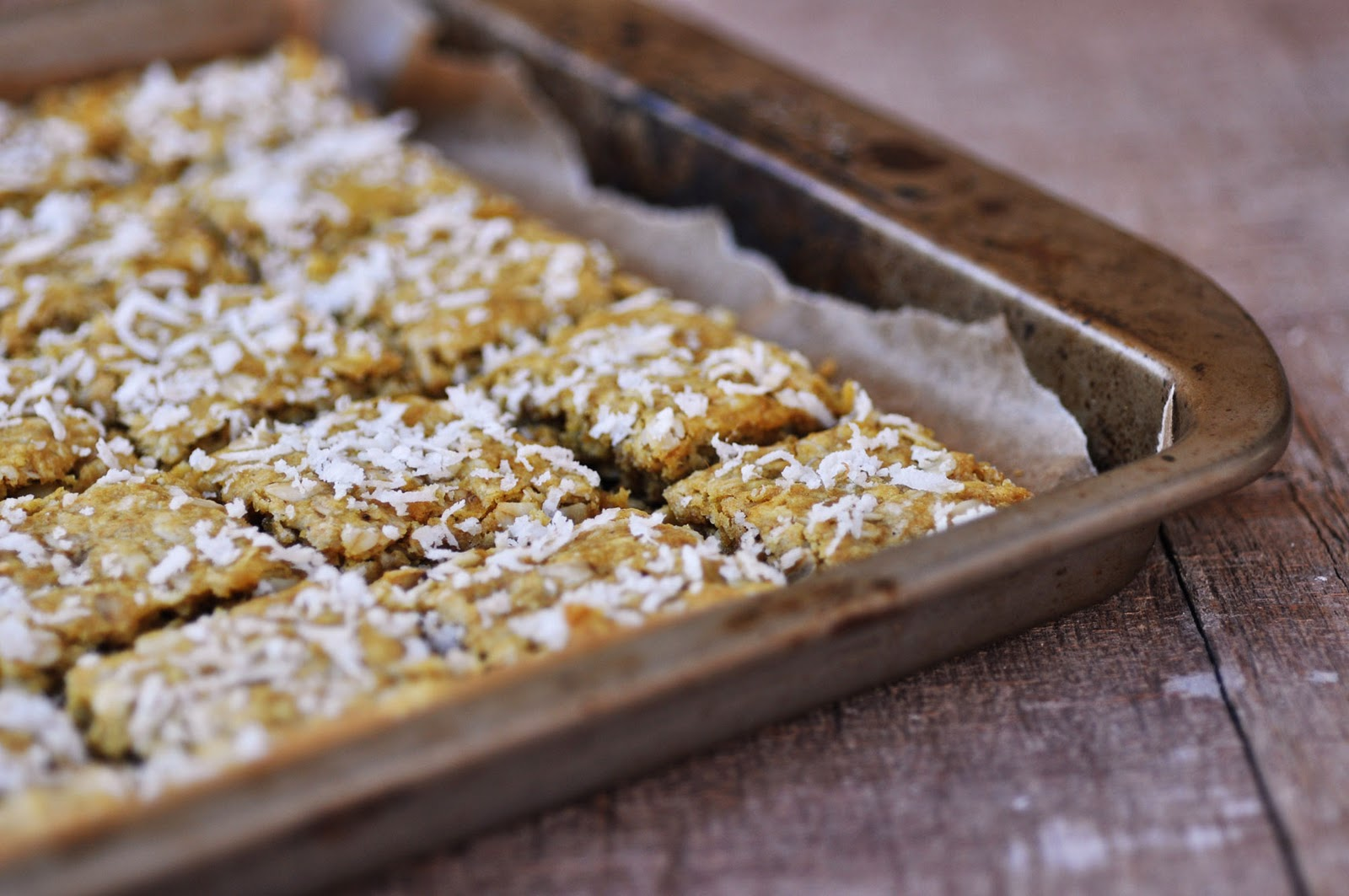 Anja's Food 4 Thought: Coconut Almond Oat Crunchies