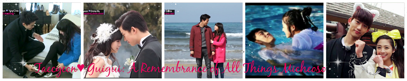 TaecYeon♥GuiGui: A Remembrance of All Things Micheoso