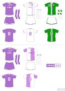 . en 2 mitades, una blanca y la otra lila. En cada una de las camisetas .