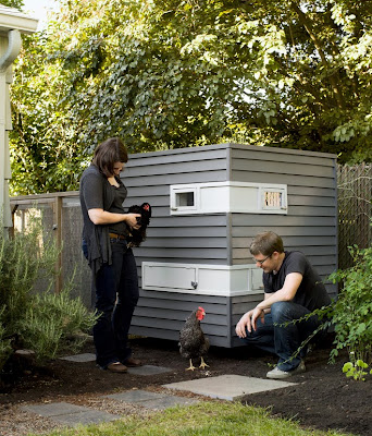 Modernist chicken coop. urban farming.