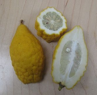 sukade vrucht kopen