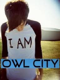 Owl City Blog's