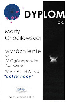 IV Wakai Haiku 2017