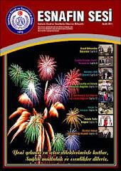 ESNAFIN SESİ - ARALIK 2011 -