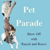 JOIN IN THE PET PARADE @ RASCAL & ROCCO'S PLACE