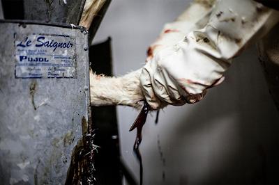 Foie gras pode ser proibido na cidade de São Paulo