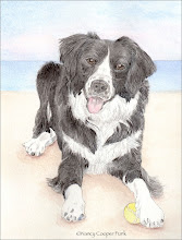Pet Portrait Info and Samples