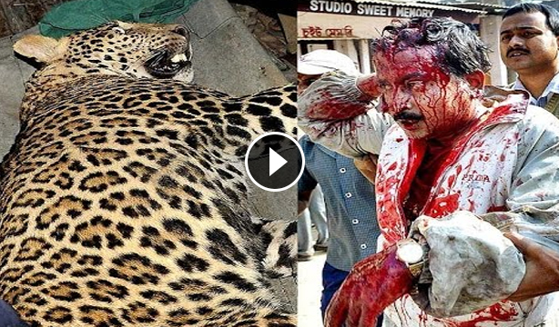 Indian leopard attack