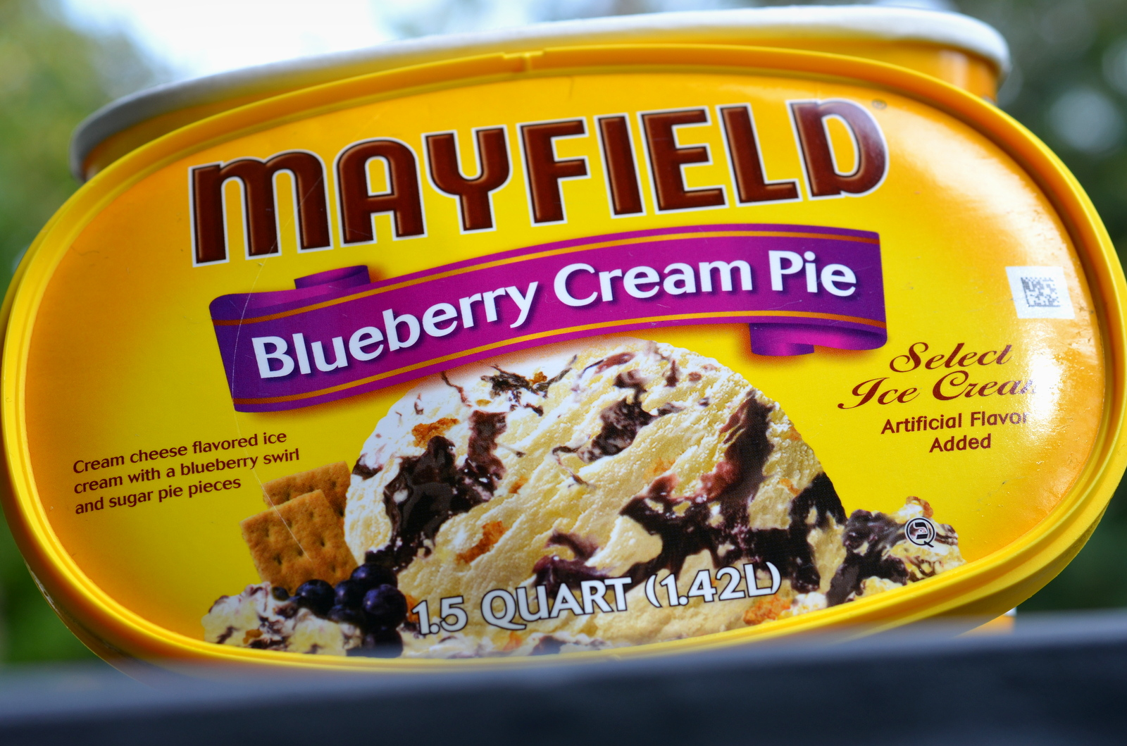 food and ice cream recipes REVIEW Mayfield Blueberry Cream Pie