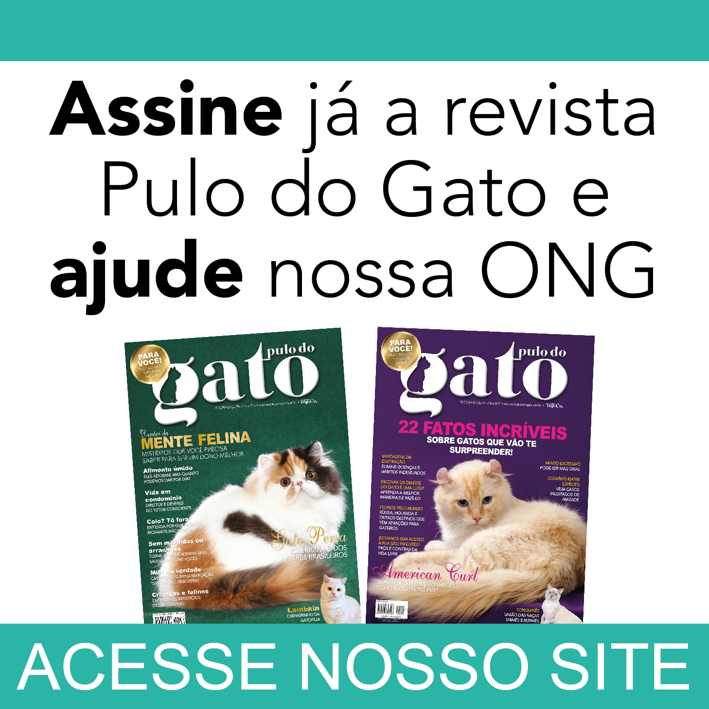 Revista Pulo do Gato