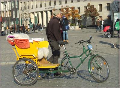 Berlino - Triciclo