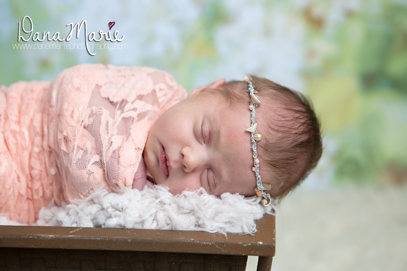 Dana Marie Photography: Newborn Baby Girl Seashell Beach Halo ...