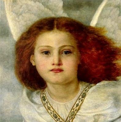 The bird of God - angel hair