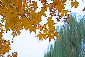 Ditan Park, Beijing
