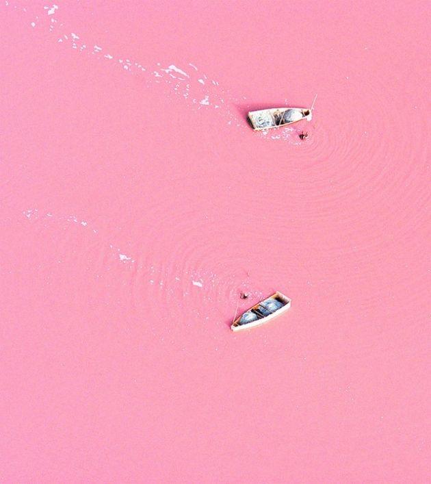 Nunca_es_demasiado_Rosa_The_Pink_Graff_027