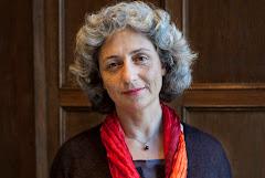 Bij de verkiezingen van 1998 werd Karimi verkozen in de Tweede Kamer voor GroenLinks. Toen ze actie