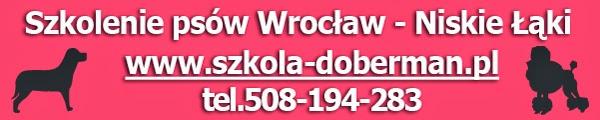 szkolenie psów we Wrocławiu Niskie Łąki
