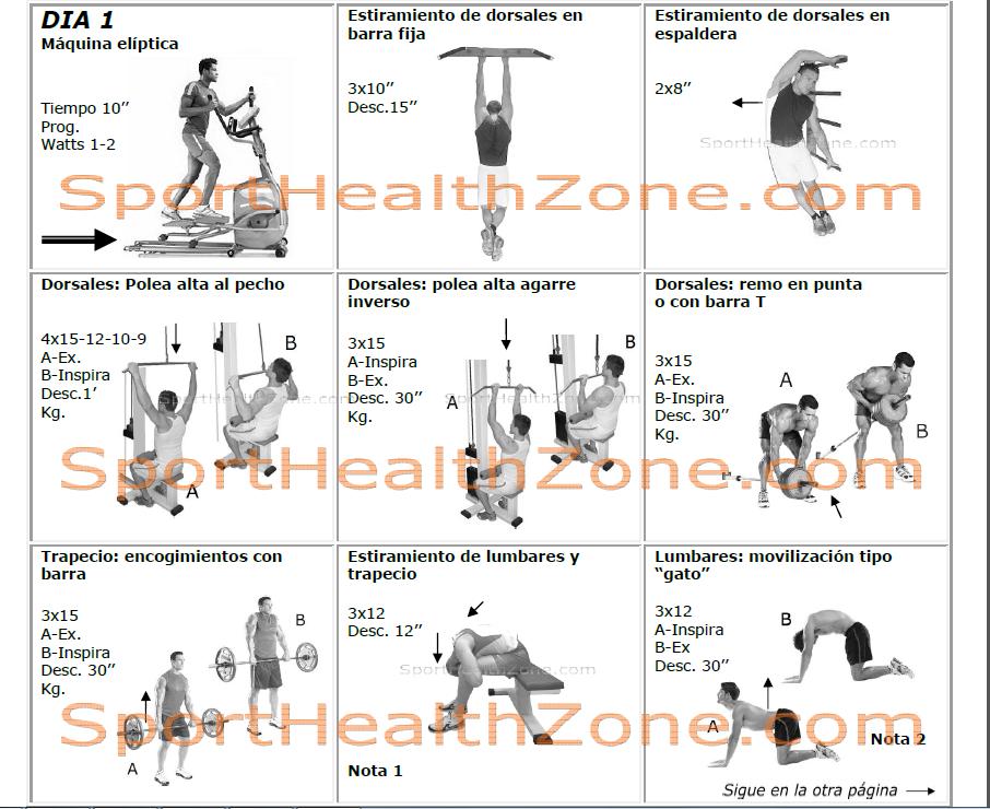 ejercicios y rutinas musculacin rutinas share the knownledge