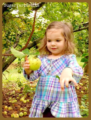 Little girl picking an apple
