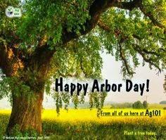 Happy National Arbor Day