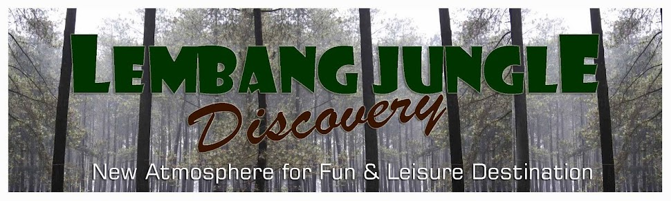 Jungle Park  Lembang Bandung : Camping Tour Education Outbound Gathering Event Organizer