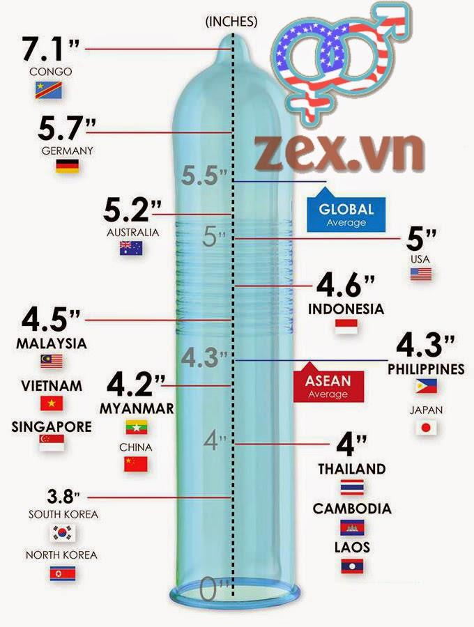 Hỉnh bảng xếp hạng kích thước dương vật chuẩn trung bình các nước trên thế giới