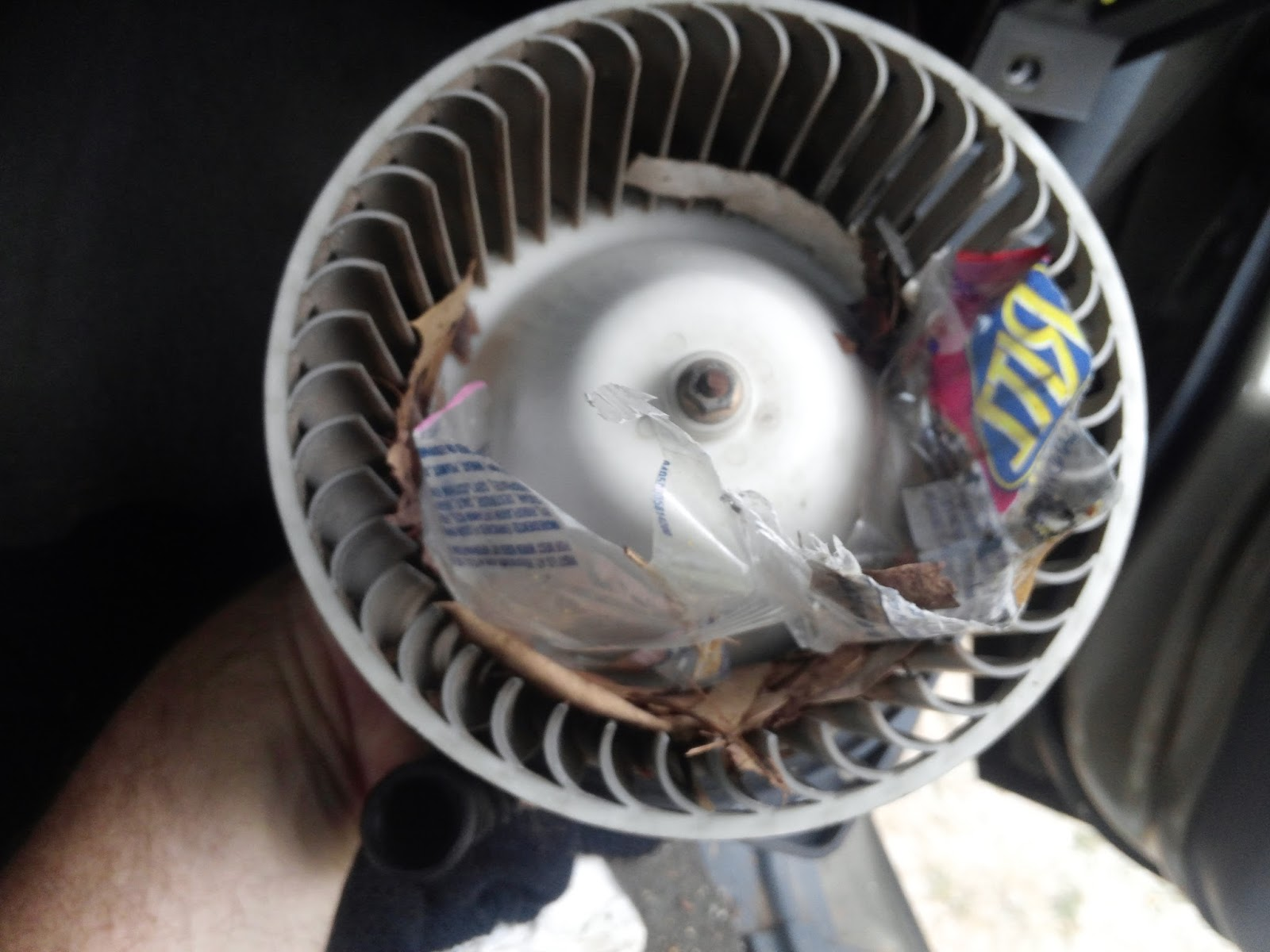 When We Removed The Blower Motor Here Is What We Found Inside The Fan Assembly I Would Say This Would Cause A Bit Of Noise