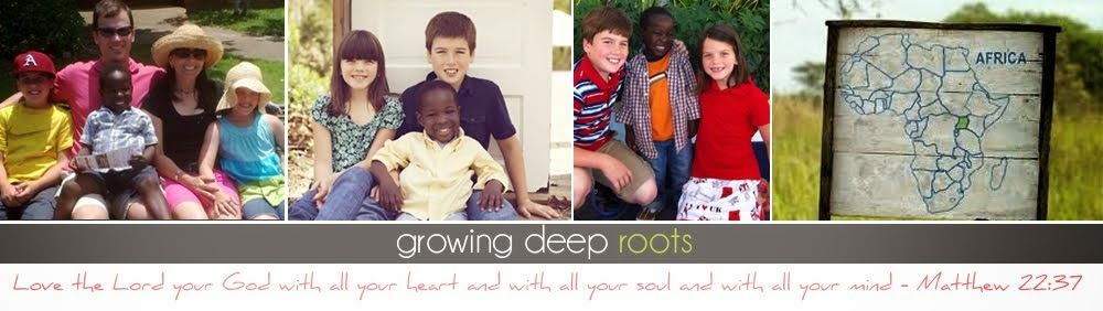 Growing Deep Roots