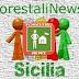 Il Piano Forestale della Regione Siciliana