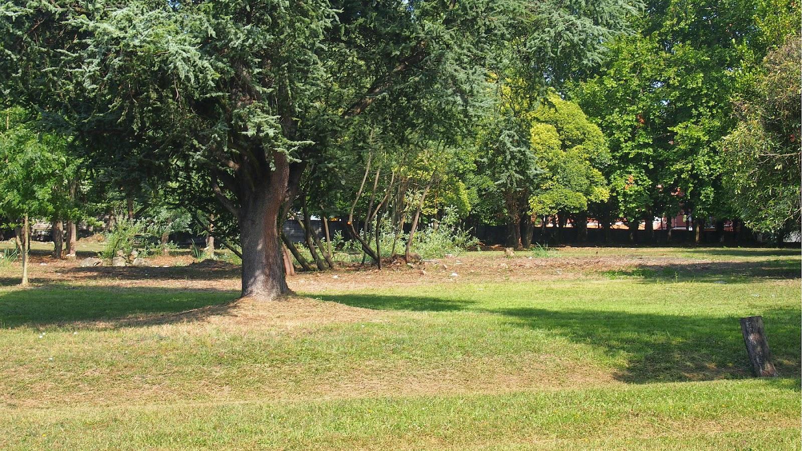 La finca Munoa en verano de 2014