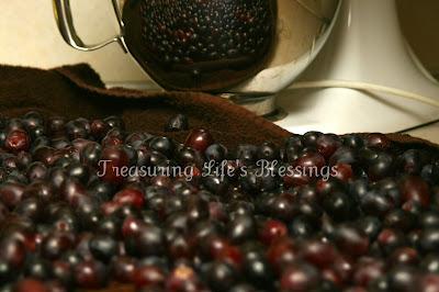 grapes, vinegar, money saving tip, kitchen