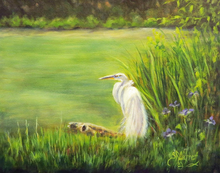 Great Egret, in a marsh landscape SOLD- prints available
