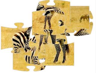 http://www.jogai.com/jogo/quebracabeca-da-zebra