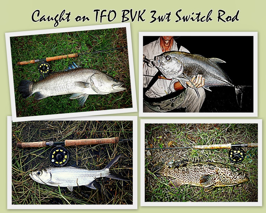 how to cast a switch fly rod