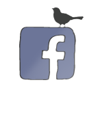 לדף הפייסבוק: