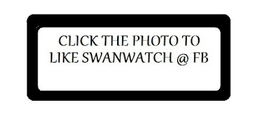 https://www.facebook.com/pages/SwanWatch/933477200004111