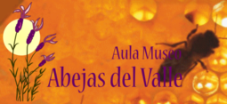 Aula Museo Abejas del Valle (Poayales del Hoyo, Ávila)