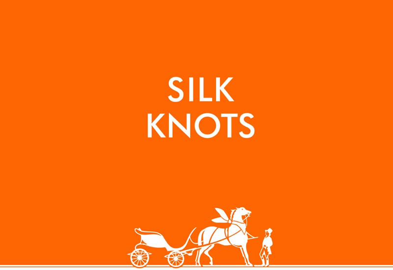 Hermes Silk Knots ipad app
