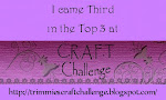 Won 3rd place for CRAFT challenge