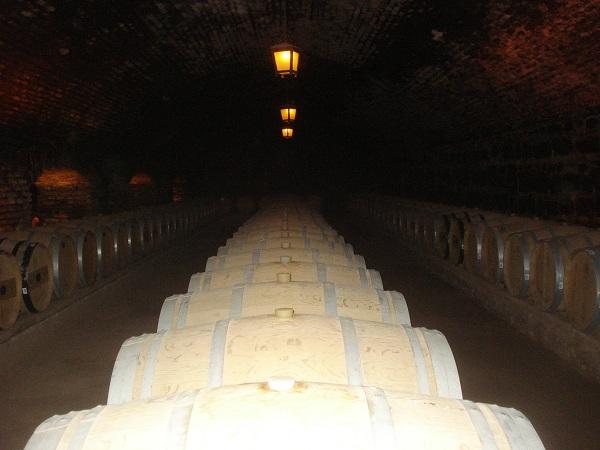 6) Degustação de vinhos na Concha y Toro