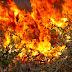 ΠΡΟΣΟΧΗ: Υψηλός κίνδυνος πυρκαγιάς την Παρασκευή [ΧΑΡΤΗΣ]