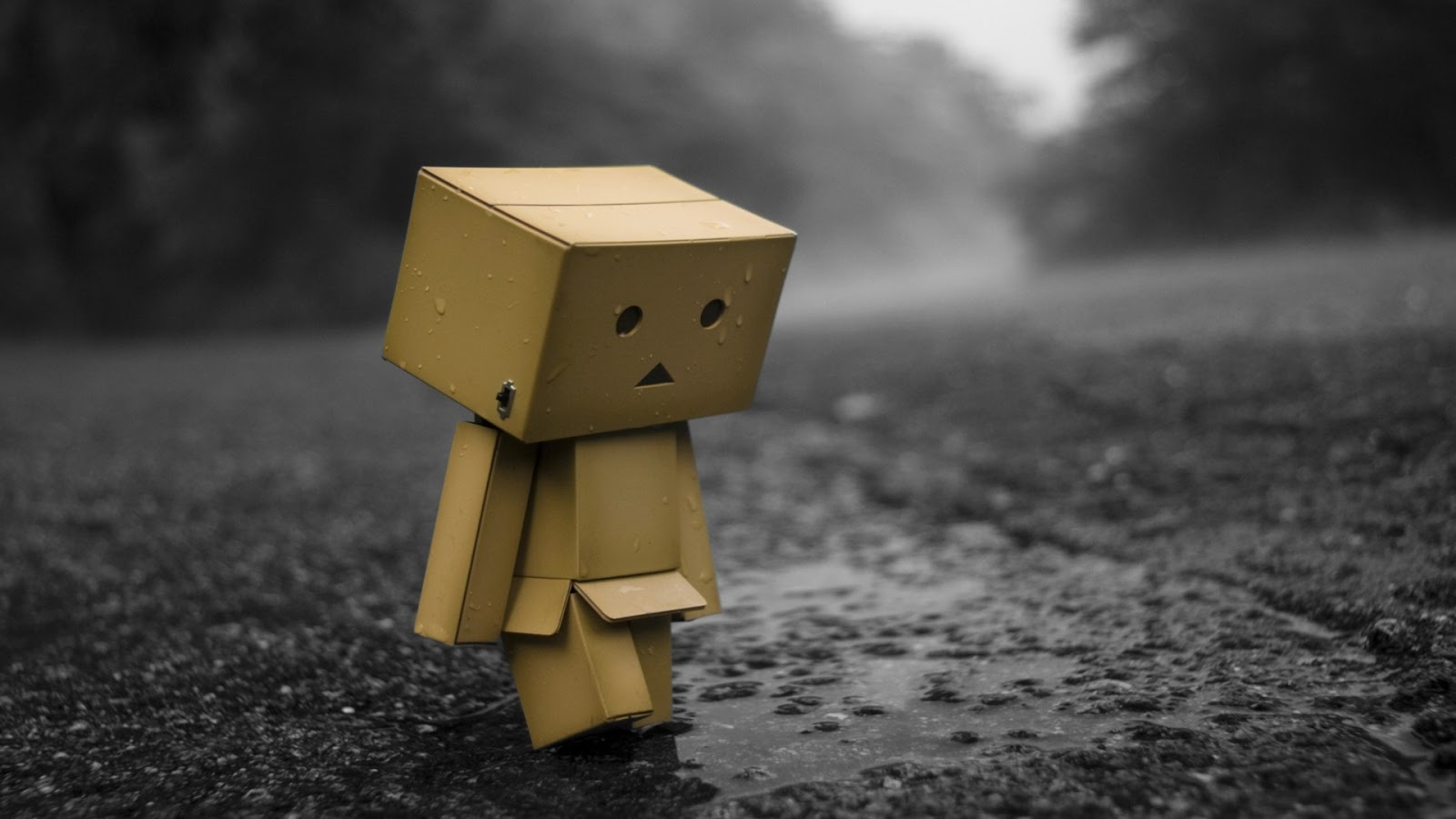 Alone sad Danbo