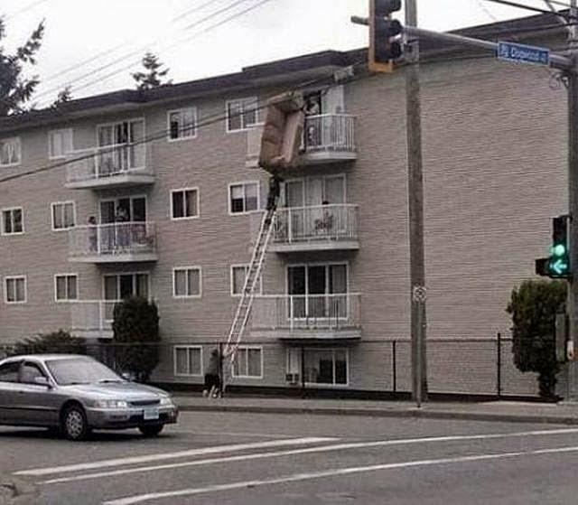 Heights of Stupidity
