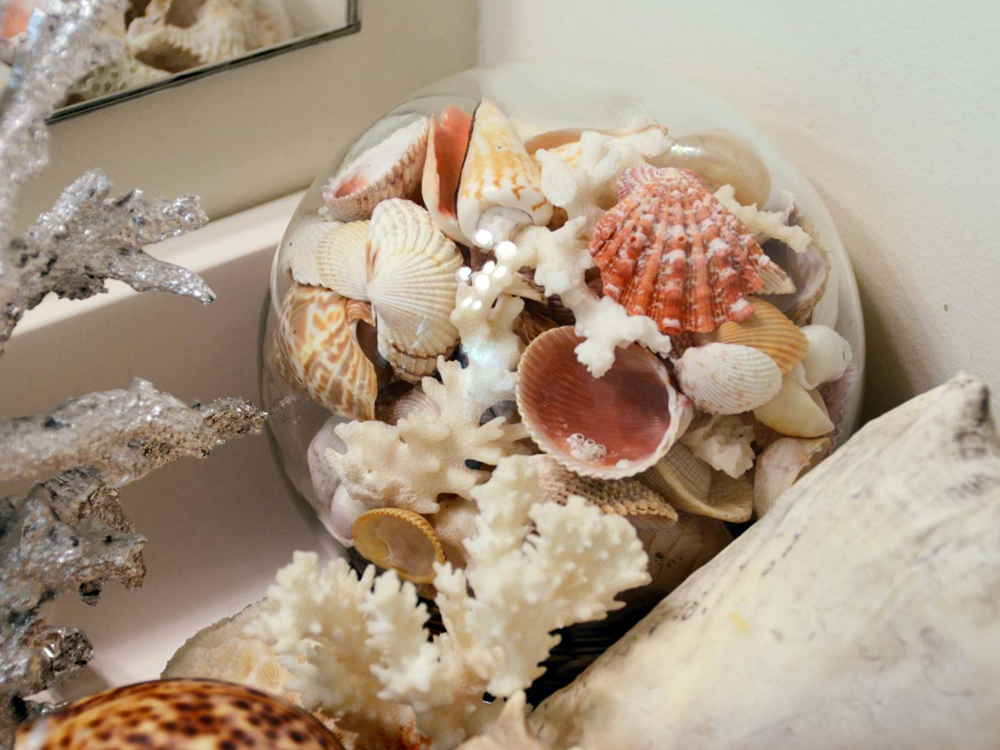 Sea shells vignette with glass globe
