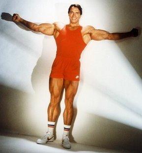Arnold Schwarzenegger de cuerpo entero