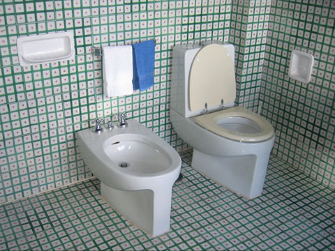 . ImVoiZe  American Standard Toilet differences and Indonesia