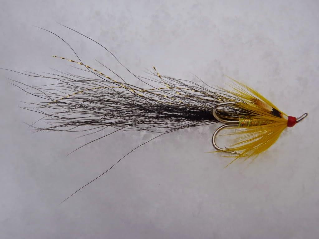 Salmon fly gledswood shrimp salmon fly tying pattern for Salon fly