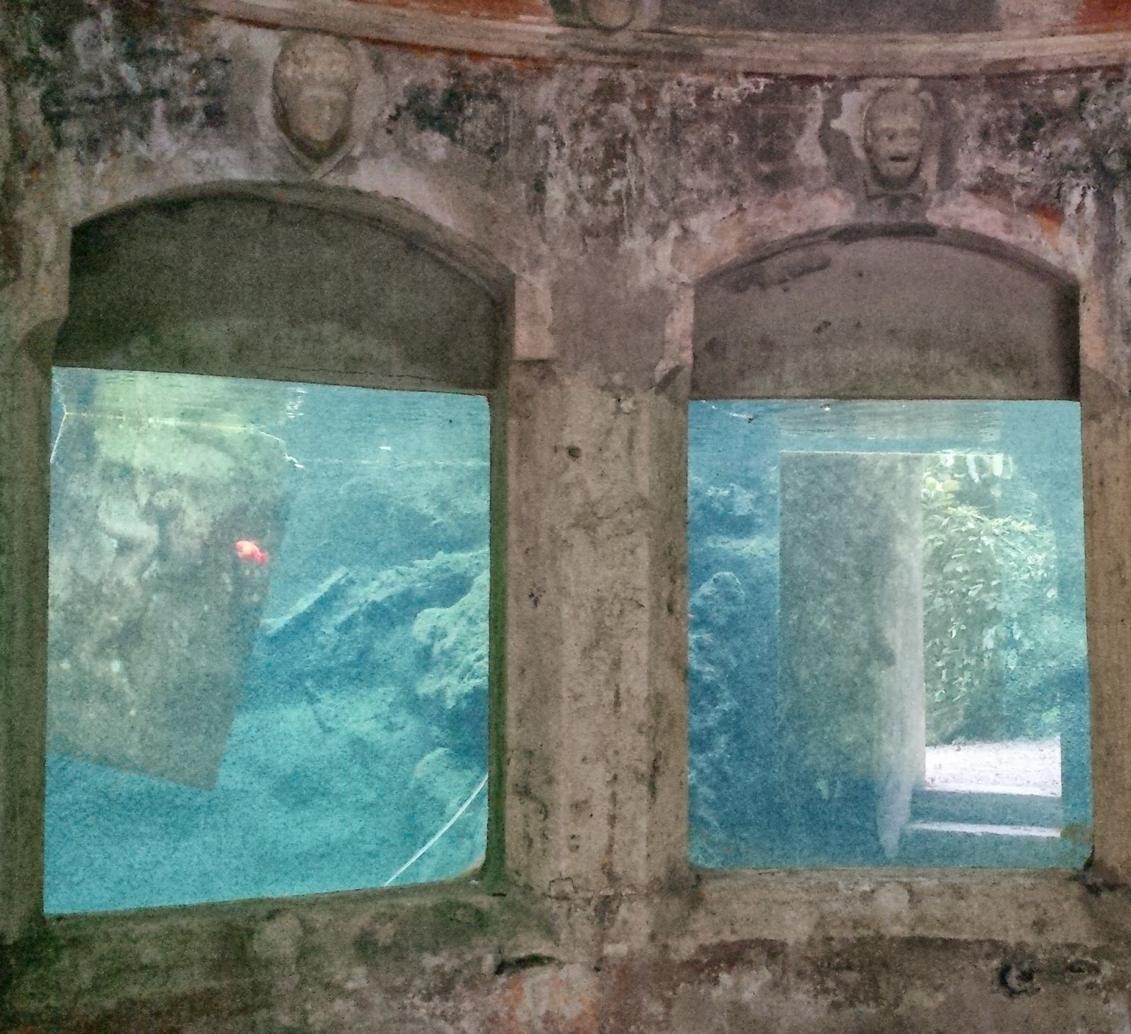 Paintings suspended in the water tanks in the aquarium in the park of Villa Rossi in Santorso