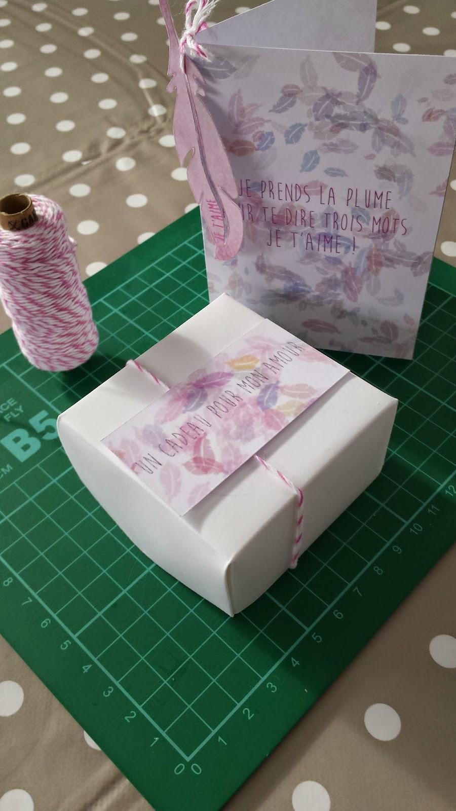 rose de biboun diy saint valentin un cadeau l ger comme une plume free printable inside. Black Bedroom Furniture Sets. Home Design Ideas
