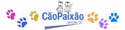 CÃOPAIXÃO - JOINVILLE